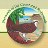 Stewards of the Coast & Redwoods